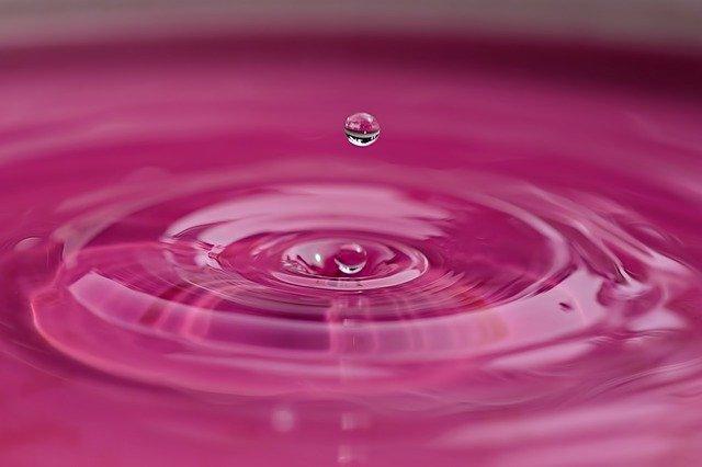 Růžová voda pro každý den